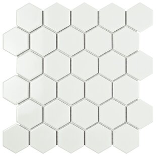 Modern Contemporary White Hexagon Tile AllModern - 10 inch hexagon tile