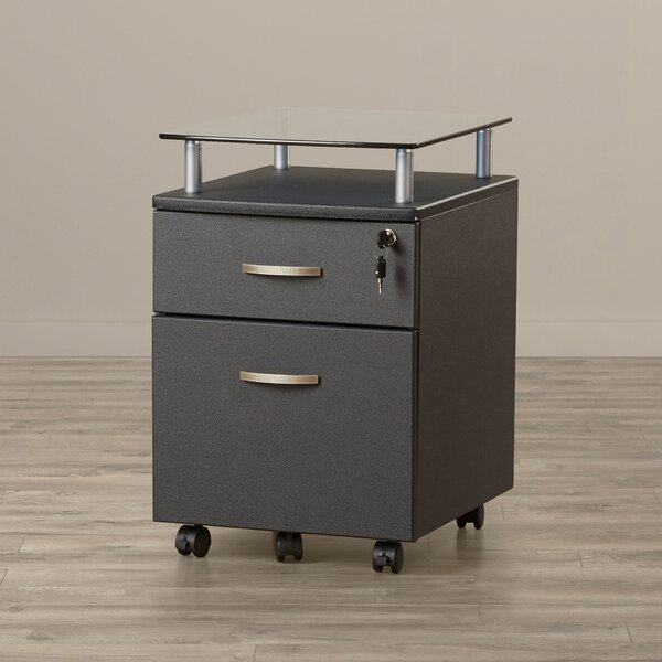Onway 2 Drawer Mobile File Cabinet by Andover Mills