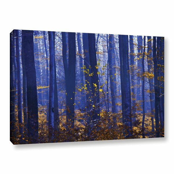 Blue Forest by Lindsey Janich Photographic Print on Wrapped Canvas by ArtWall