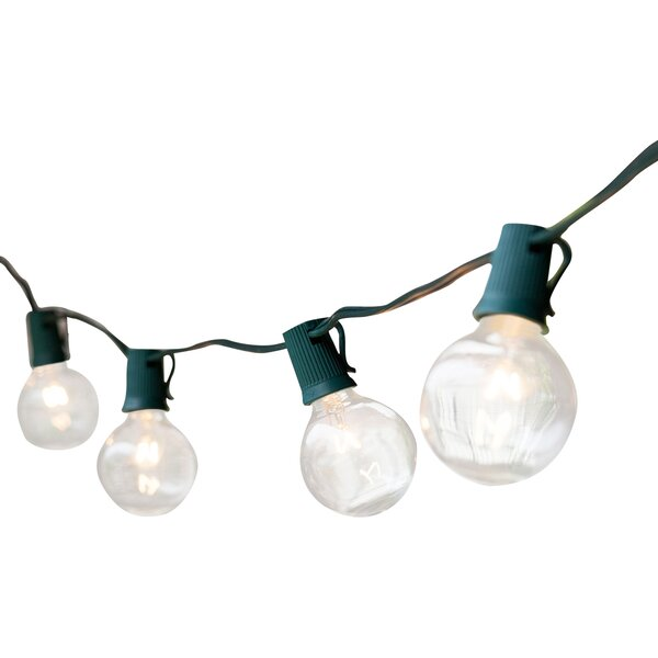 25-Light 25 ft. Globe String Lights by Wintergreen Lighting