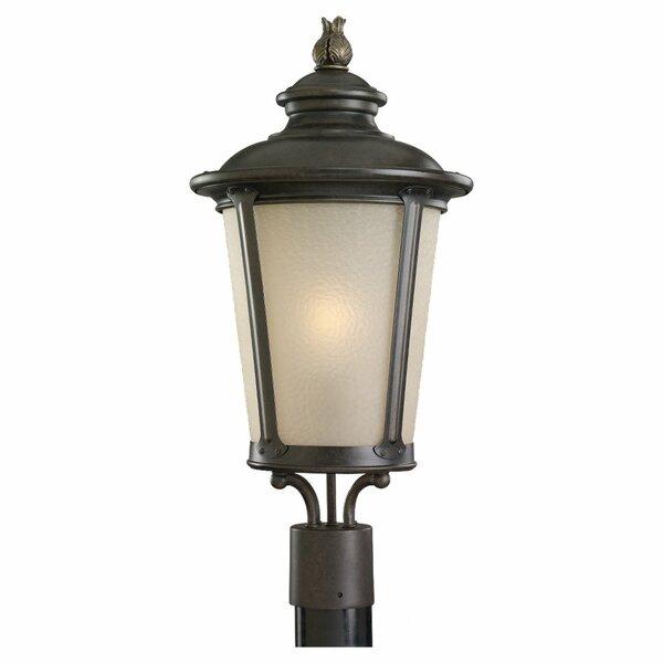 Alphonsine Outdoor 1-Light Lantern Head by Bloomsbury Market