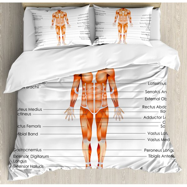 Human Anatomy Muscle System Diagram of Body Features Biological Elements Medical Heath Image Duvet Set by East Urban Home