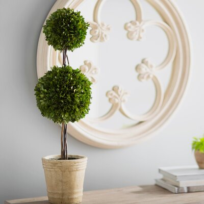 beyer preserved boxwood faux topiary