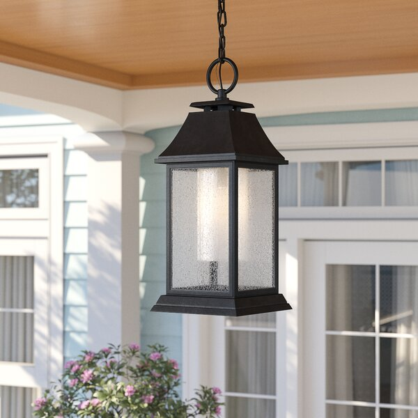 Roseman 1-Light Outdoor Hanging Lantern by Sol 72 Outdoor