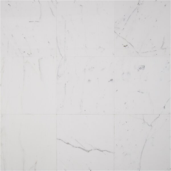 18 x 18 Marble Field Tile in Calacatta Gold by MSI