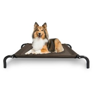 Elevated Pet Dog Bed/Cot