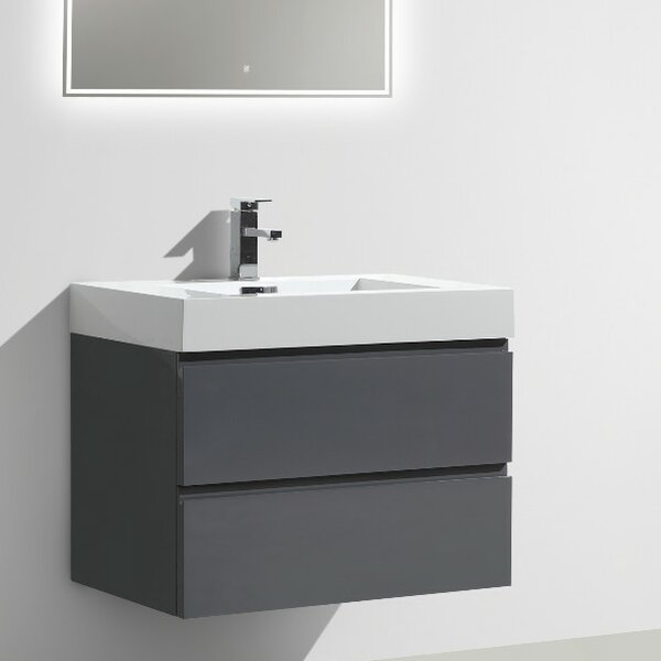 Leni 29 Single Bathroom Vanity Set by Orren Ellis
