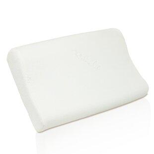 Carys Soft Memory Foam Queen Pillow ByAlwyn Home
