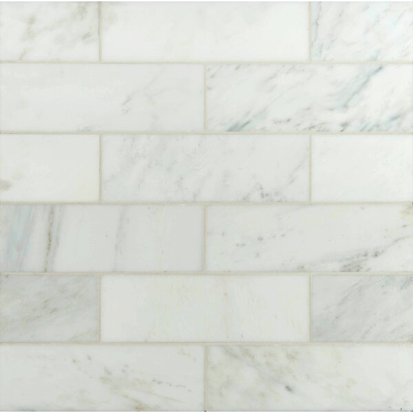 4 x 12 Polished Marble Tile in Carrara White by MSI