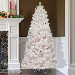 pre lit christmas trees youll love wayfair - 12 Pre Lit Christmas Tree