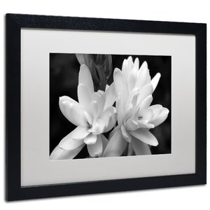 Tuber Rose in Black and White Framed Photographic Print by Latitude Run