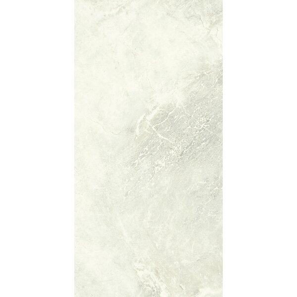 Anthology 12 x 24 Porcelain Field Tile in Ivory by Tesoro