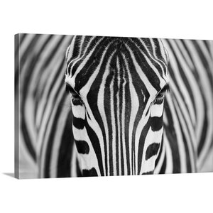 Zebra by Hesham Alhumaid Photographic Print on Canvas by Canvas On Demand