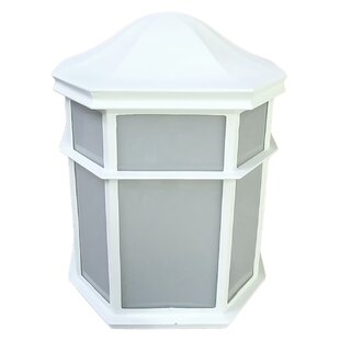 Top Reviews Willowridge 1-Light Outdoor Flush Mount By Red Barrel Studio