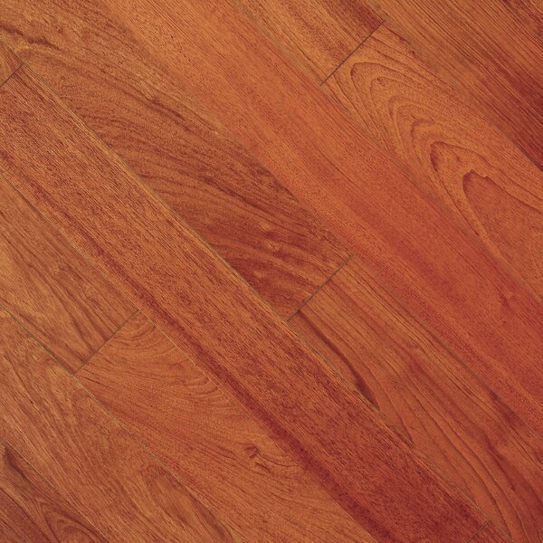 Imperial 4-3/4 Engineered Brazilian Cherry Hardwood Flooring in Brazilian Cherry by Albero Valley