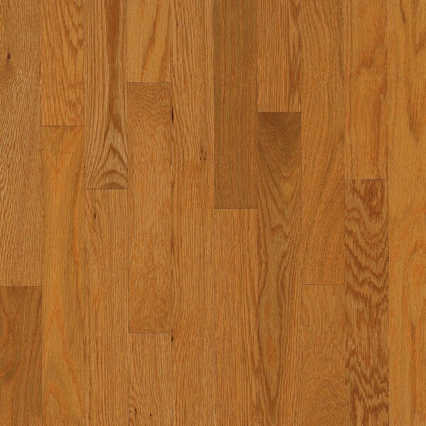 Dundee 2-1/4 Solid White Oak Hardwood Flooring in Butter Rum by Bruce Flooring