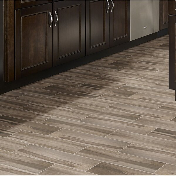 Carolina Timber 6 x 36 Ceramic Wood Look Tile in Beige by MSI