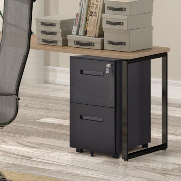 Metal 2-Drawer Mobile Vertical Filing Cabinet