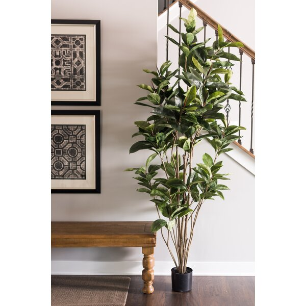 Artificial Foliage Rubber Tree in Pot by Mercury Row