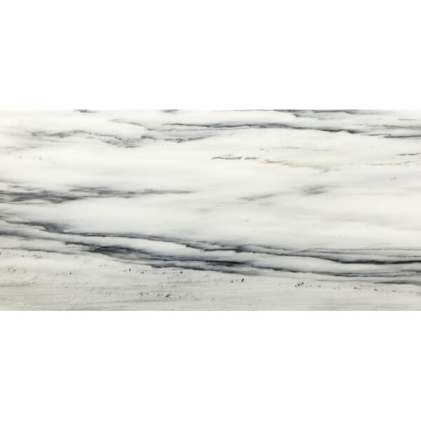 Vicenza 18 x 18 Marble Field Tile in Nite by Emser Tile