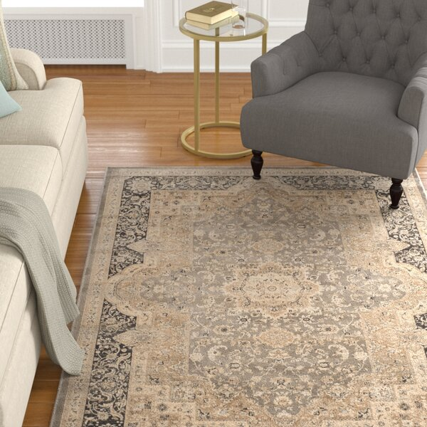 Riverport Taupe/Black Area Rug by Alcott Hill