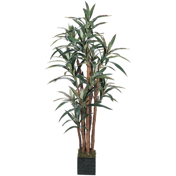 Silk Yucca Tree in Pot by Nearly Natural