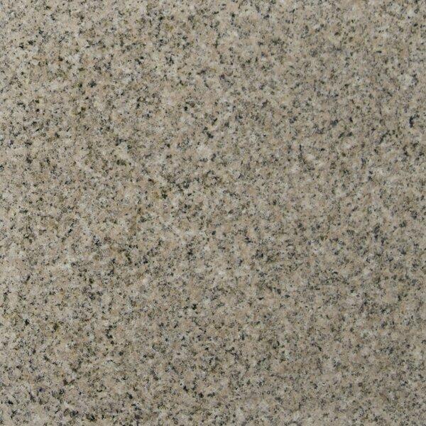 18 x 18 Granite Field Tile in Giallo Fantasia by MSI