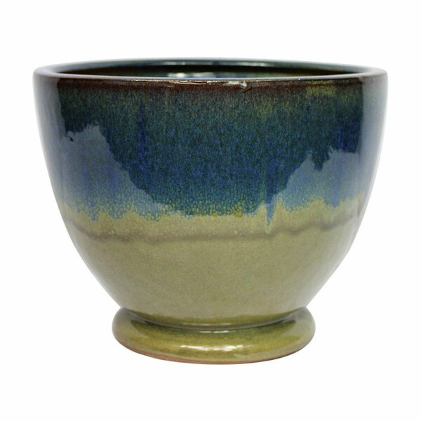 Oleary Ceramic Pot Planter by World Menagerie