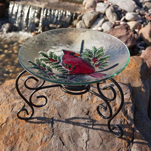 Table Top Stand Birdbath by Evergreen Flag & Garden