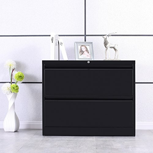 Arnett 2 Drawer Lateral Filing Cabinet by Latitude Run