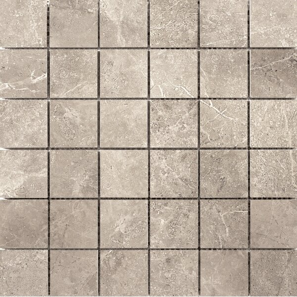 Realm 2 x 2 Ceramic Mosaic Tile in Nation by Emser Tile