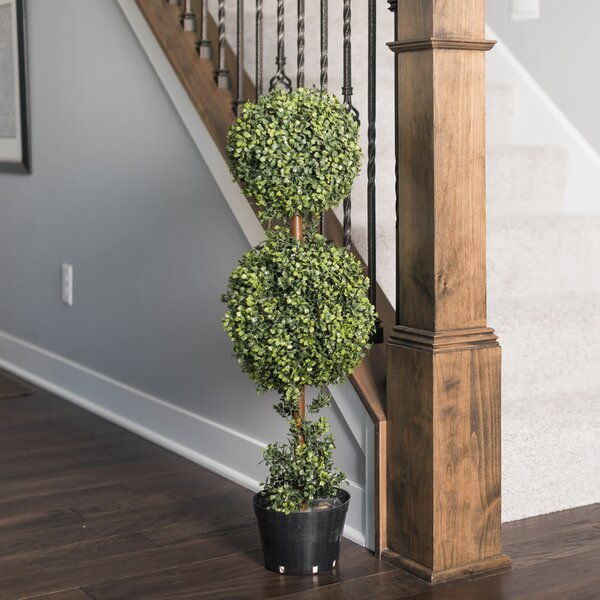 Inherently Flame Retardant Floor Boxwood Topiary in Planter by Fleur De Lis Living