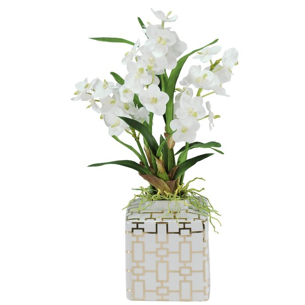 Vanda Orchids Floral Arrangement in Planter by Jane Seymour Botanicals