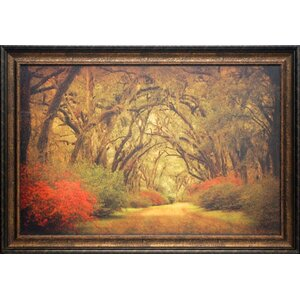 'Road Lined with Oaks and Flowers' by William Guion Framed Photographic Print by North American Art