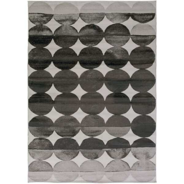 Hudson Charcoal/Light Gray Area Rug by Zipcode Design