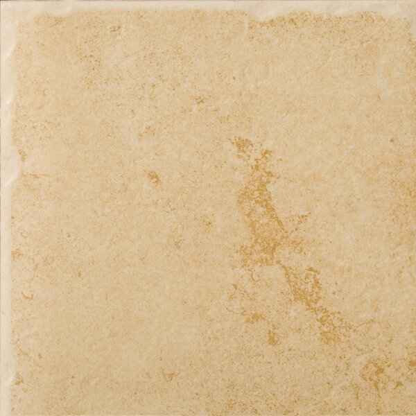 Genoa 7 x 7 Porcelain Field Tile in Albergo by Emser Tile