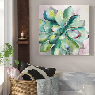 Great U0027Succulentu0027 Print On Wrapped Canvas