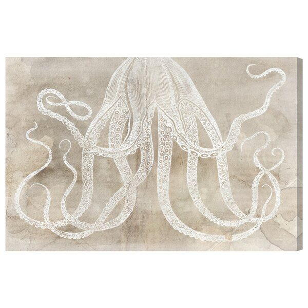 Octopus Paper Framed Graphic Art on Wrapped Canvas by Bay Isle Home