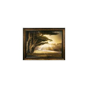 Arise, Shine Framed Photographic Print by Carpentree