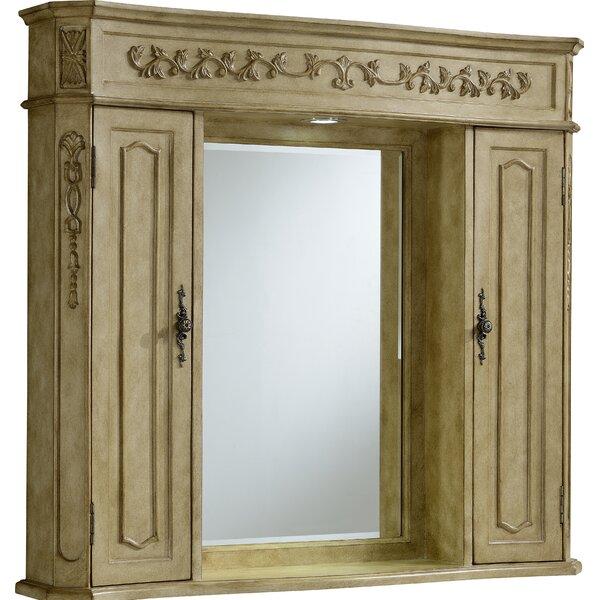 Isadora Surface Mount Framed Medicine Cabinet with LED Lighting [Astoria Grand - ARGD8818]