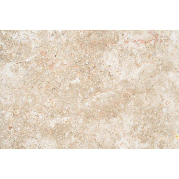 12x12 Limestone Field Tile