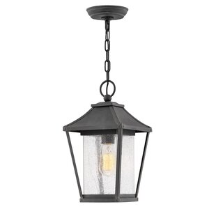 Compare Palmer 1-Light Outdoor Hanging lantern By Hinkley Lighting