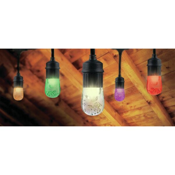 Seasons LED Color Changing 12 Light String Lights by The Holiday Aisle