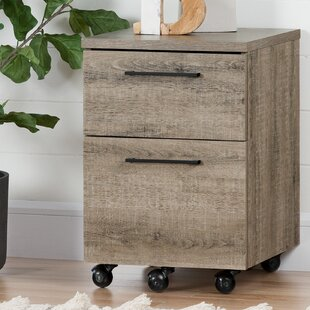 Superieur Munich 2 Drawer Mobile Vertical Filing Cabinet