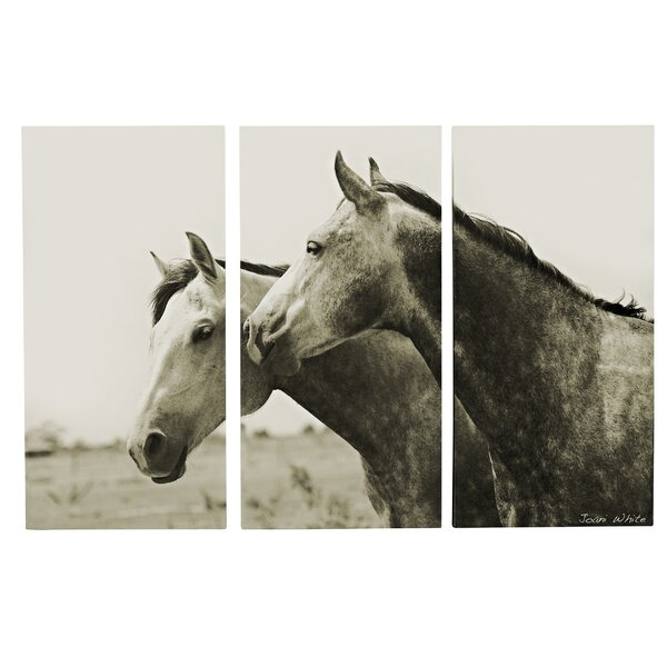 Arabian Horses 3 Piece Photographic Print on Wrapped Canvas Set by Majestic Mirror