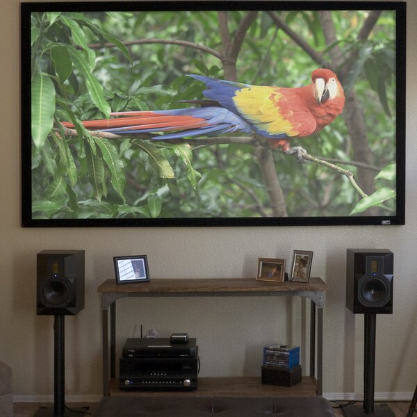 Gray Fixed Frame Projection Screen By Elite Screens