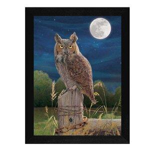 'Night Owl' Framed Graphic Art Print by Trendy Decor 4U