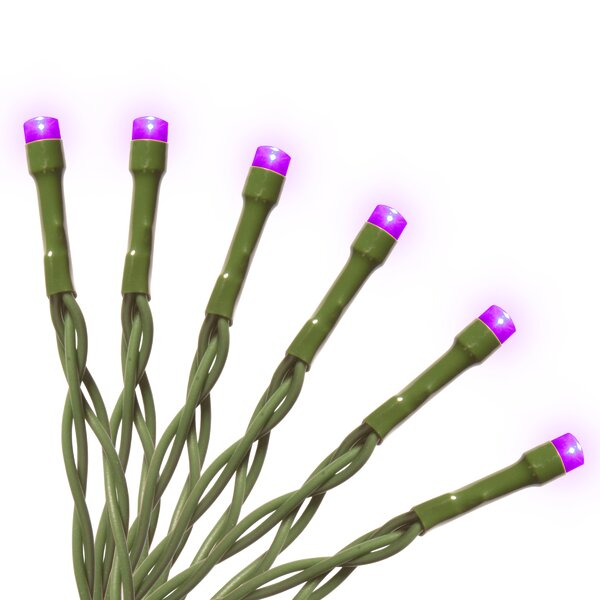 Battery Operated 15 Bulb LED String Lights by National Tree Co.