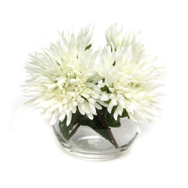 Dahlias in Glass Vase by Dalmarko Designs