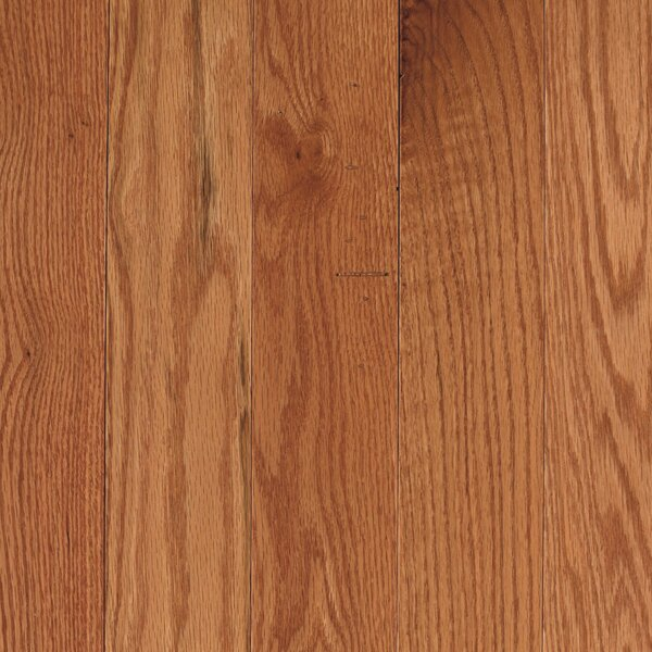Randleton 3-1/4 Solid Oak Hardwood Flooring in Butterscotch by Mohawk Flooring